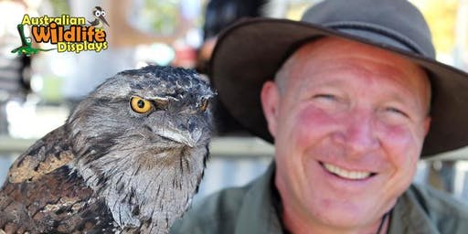 Curious Creatures Wildlife Show School Holiday Program at Lake Haven Library