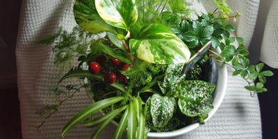 Cheerful Christmas Dish Garden Workshop.  Just in time for the holidays!