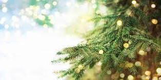 Sparkle this Christmas with MUA Miranda Etheridge