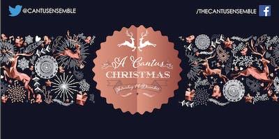 A Cantus Christmas