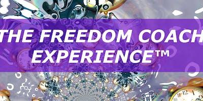 FREEDOM COACH EXPERIENCE - ZURICH