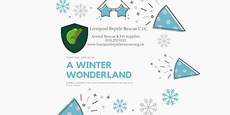 A Winter Wonderland tickets