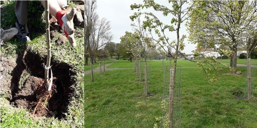 Community Orchard Planting Day
