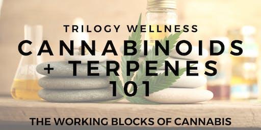 Cannabinoids + Terpenes 101 November Workshop