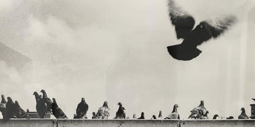 Black & White Darkroom Introduction - 5 weeks course (£135)