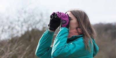 Beginners Bird Watching Course at RSPB Arne