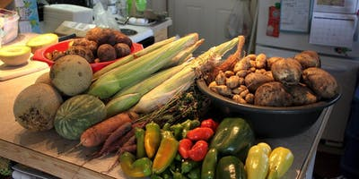 Introduction to Sustainable Home Food Production
