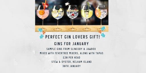 Gins for January, Kelham Island