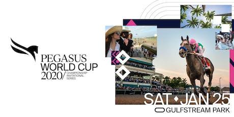 Pegasus World Cup Invitational | Level 1 tickets