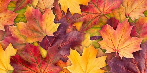 Fall Festival of Praise