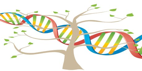 Getting Started With DNA and Using it for Brick Walls tickets