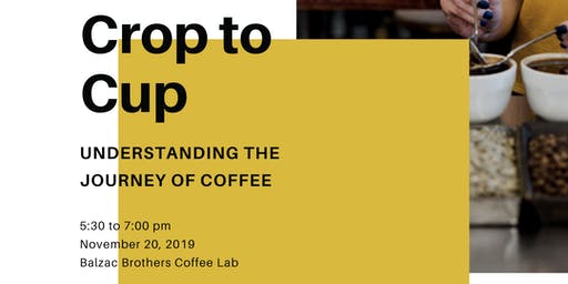 Crop to Cup: Understanding the Journey of Coffee