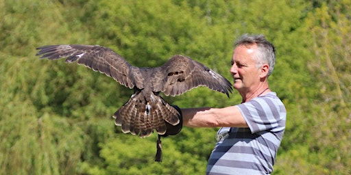 Six Day Falconry Course