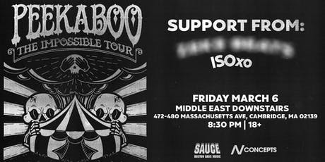 SAUCE Boston ft. Peekaboo | Middle East Downstairs | 3.6.20 tickets