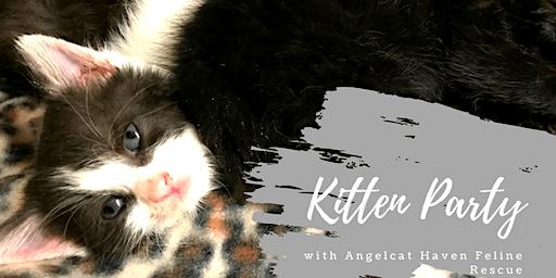Angelcat Haven Kitten Party December 14th