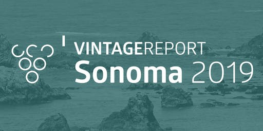 2019 Sonoma Vintage Report