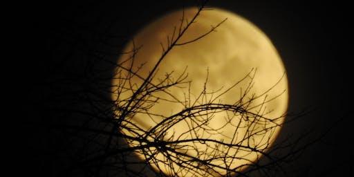 Full Moon Dinner at Furnace Falls Farm