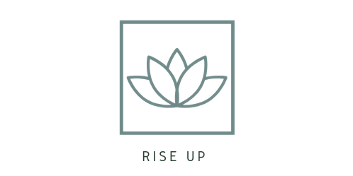 Rise up financial courses