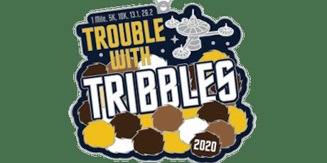 2020 Trouble with Tribbles 1M, 5K, 10K, 13.1, 26.2 - Arlington tickets