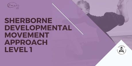Sherborne Developmental Therapy Approach Level 1 tickets