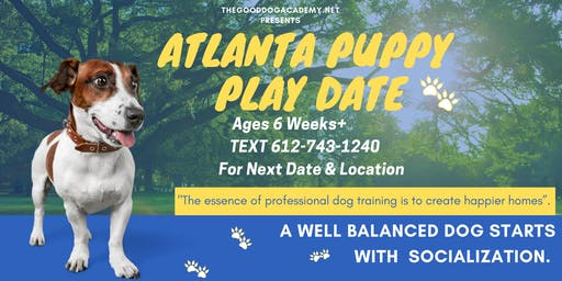Puppy Hour: Atlanta Holiday Puppy Play Date!