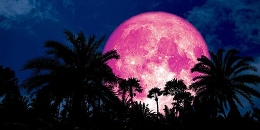 Full  Pink Moon Paddle Party (SUP and Kayak)