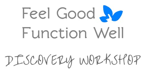 Feel Good Function Well Discovery Workshop - Rochester - January 2020