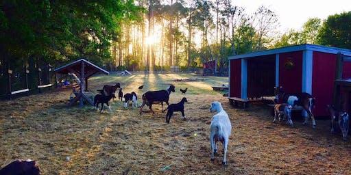 Fall Family Farm Day