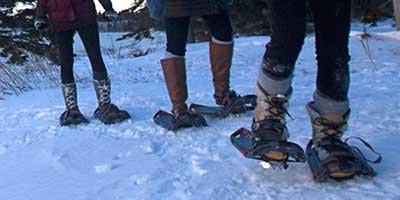 Snowshoe or Winter Hike at Sugarloaf Cove
