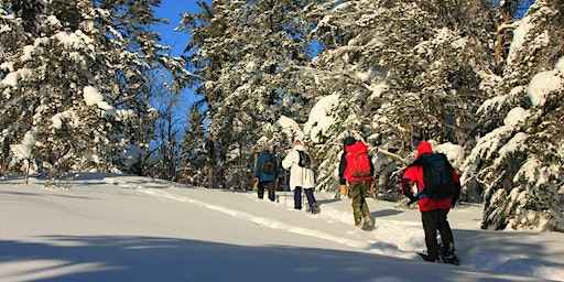 Snowshoe or Winter Hike at Leveaux Mountain