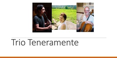 **** TENERAMENTE: The Beethoven 2020 Project