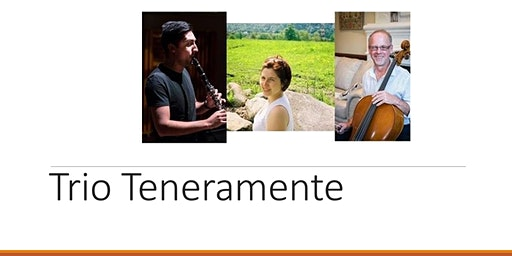 TRIO TENERAMENTE: The Beethoven 2020 Project