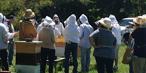 Beginner Beekeeper Class 2020 Saturday track