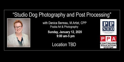 """Studio Dog Photography and Post Processing"" with Danica Barreau"