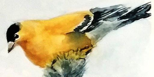 Beginner Watercolor - Maine Birds One-Day Workshop