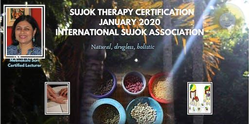 Become a Holistic Healer: Sujok Certification