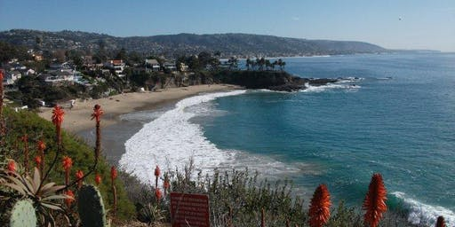 Laguna Beach & Village Walkabout