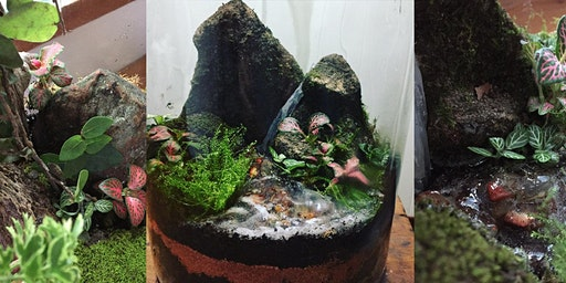 Waterfall terrarium workshop