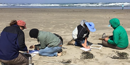 Marine Debris educator workshop - Bandon