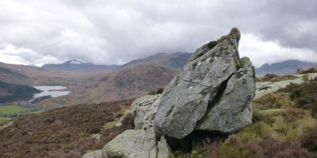 Nature of Snowdonia - plus Birds in the Mountains tickets