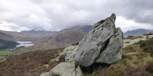 Nature of Snowdonia - plus Birds in the Mountains