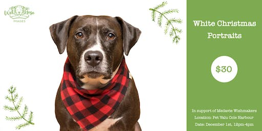 Christmas Portraits in Support of Medavie Wishmakers