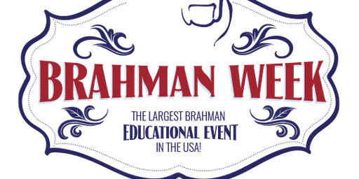 Brahman Country Workshop - 2020