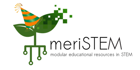 meriSTEM workshop - Editing Videos and End of Year celebrations tickets