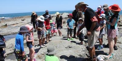 Dinosaur Discovery - To Flat Rocks