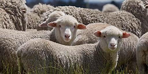 Zagro  WA Agriculture Bio-Security Update