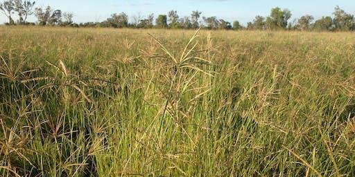 Grazing Land Management EDGE