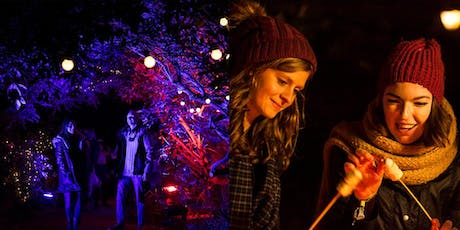 Enchanted Witley Court tickets