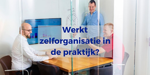 Werkt zelforganisatie in de praktijk?