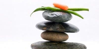 Soul Food: Transitioning to a Plant-Based Diet